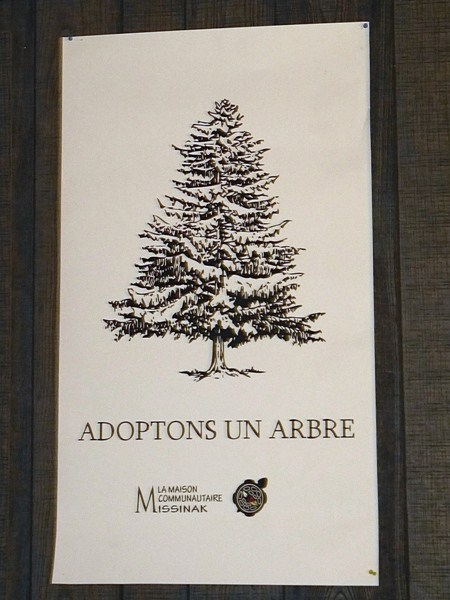 Adoptons un arbre